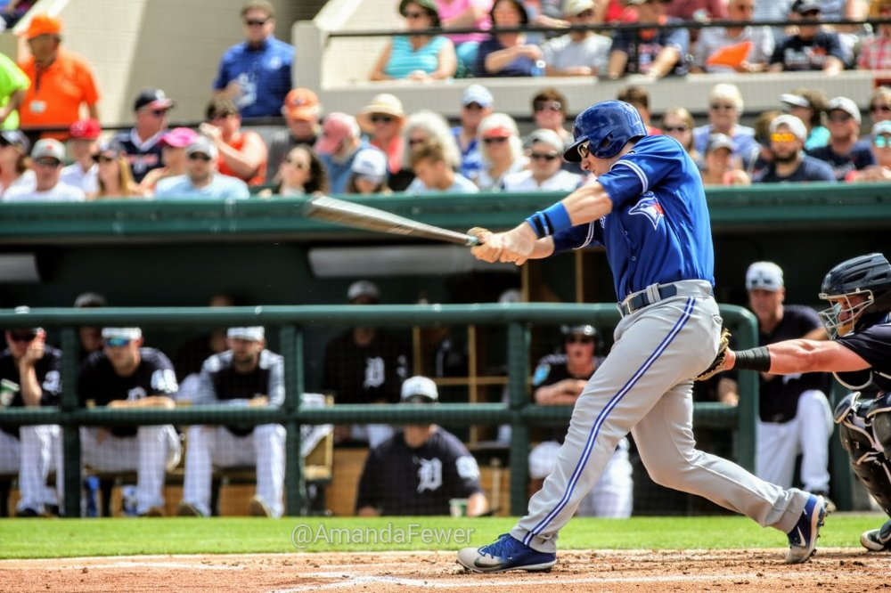 Blue Jays' prized catching prospect Danny Jansen had a single and an RBI in two at bats against the Detroit Tigers on Saturday.