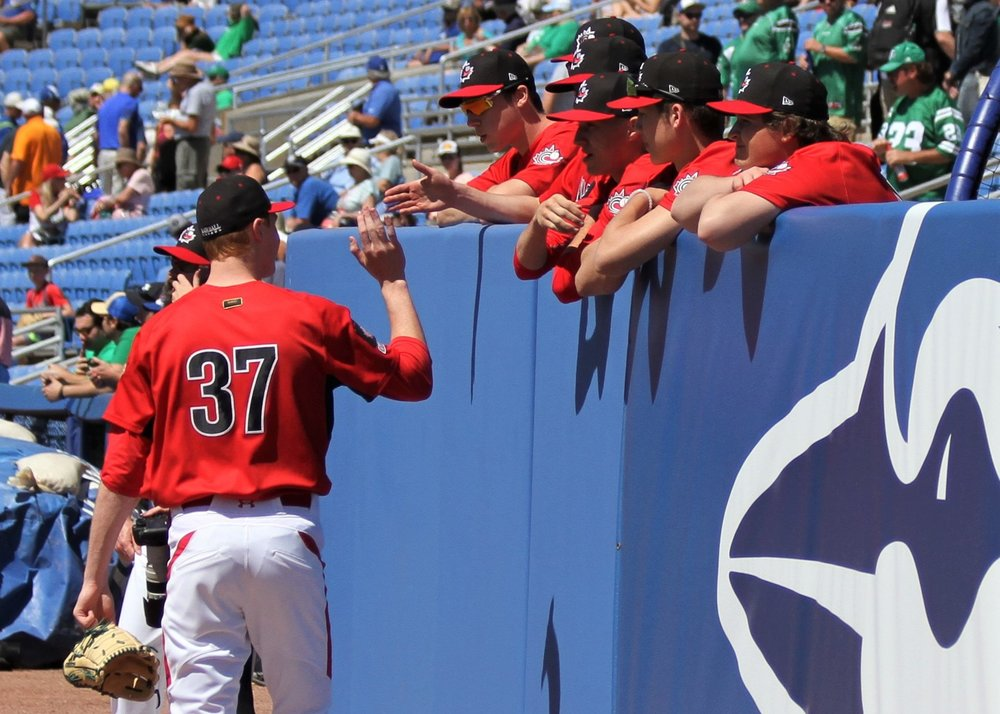 Pitcher Eric Cerantola (Oakville, Ont.) high fives his teammates.