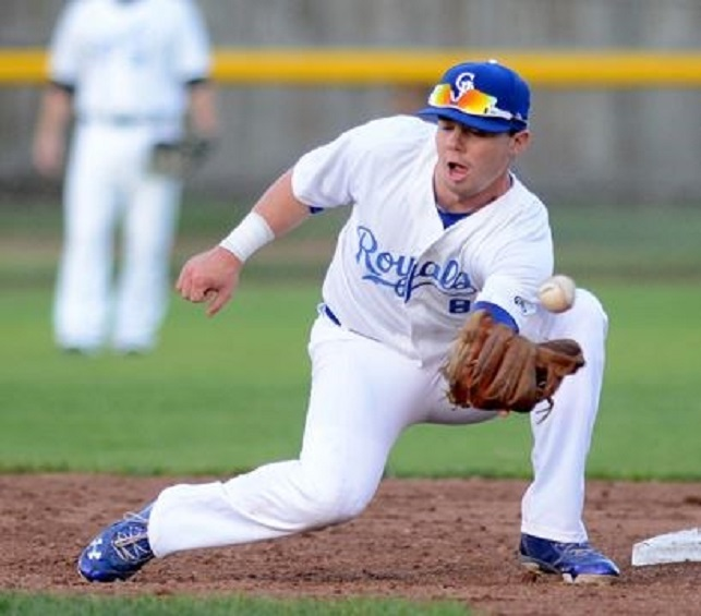 Former Ontario Terrier Mattingly Romanin (Burlington, Ont.) has signed with the Quebec Capitales.