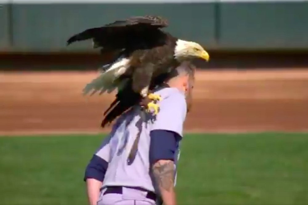 Seattle Mariners LHP James Paxton (Ladner, BC) stood and soared with the Eagles this season.