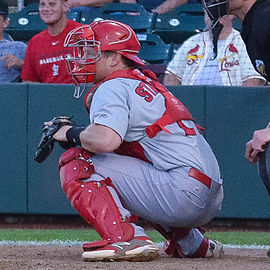 Skeeters give former Cardinals catcher one more shot