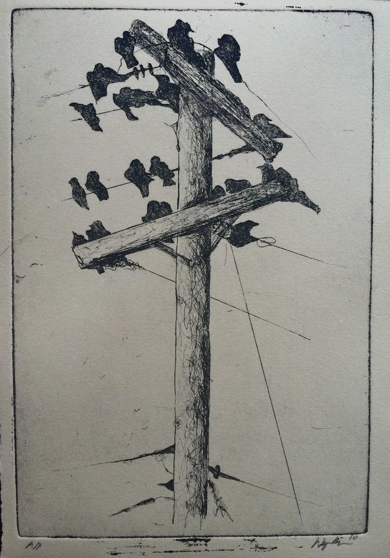 bird church  lithograph  2010