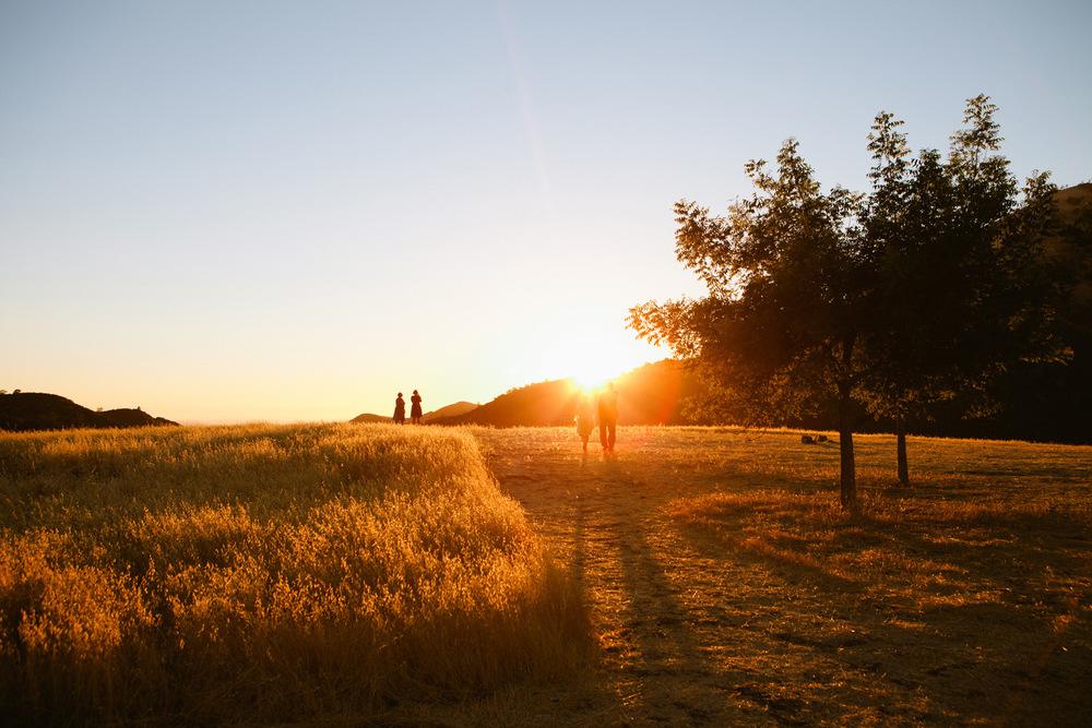 Los Olivos, California