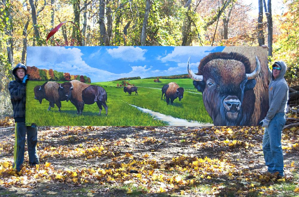Sky Blue Pastures, Bison
