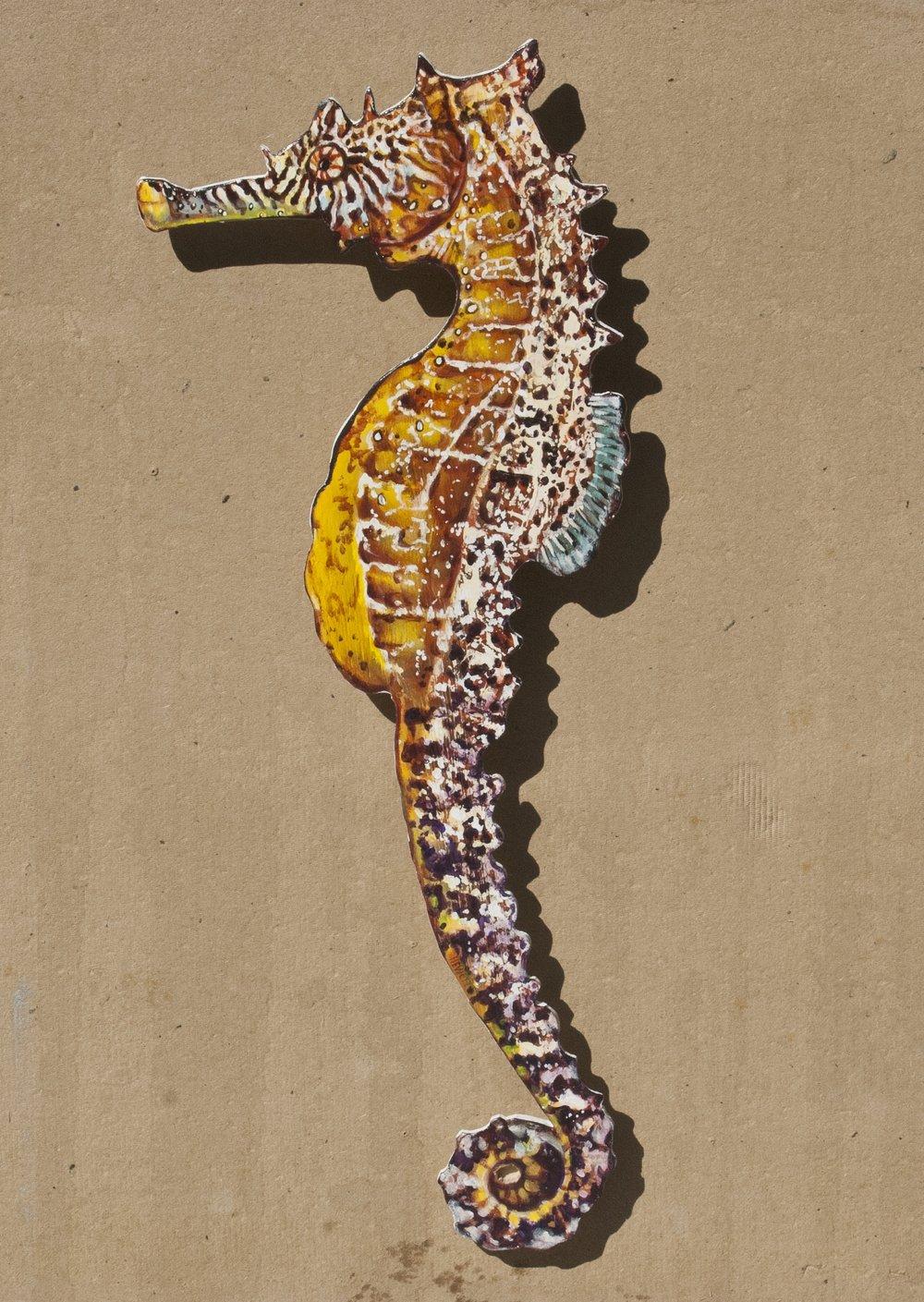 Seahorse, left