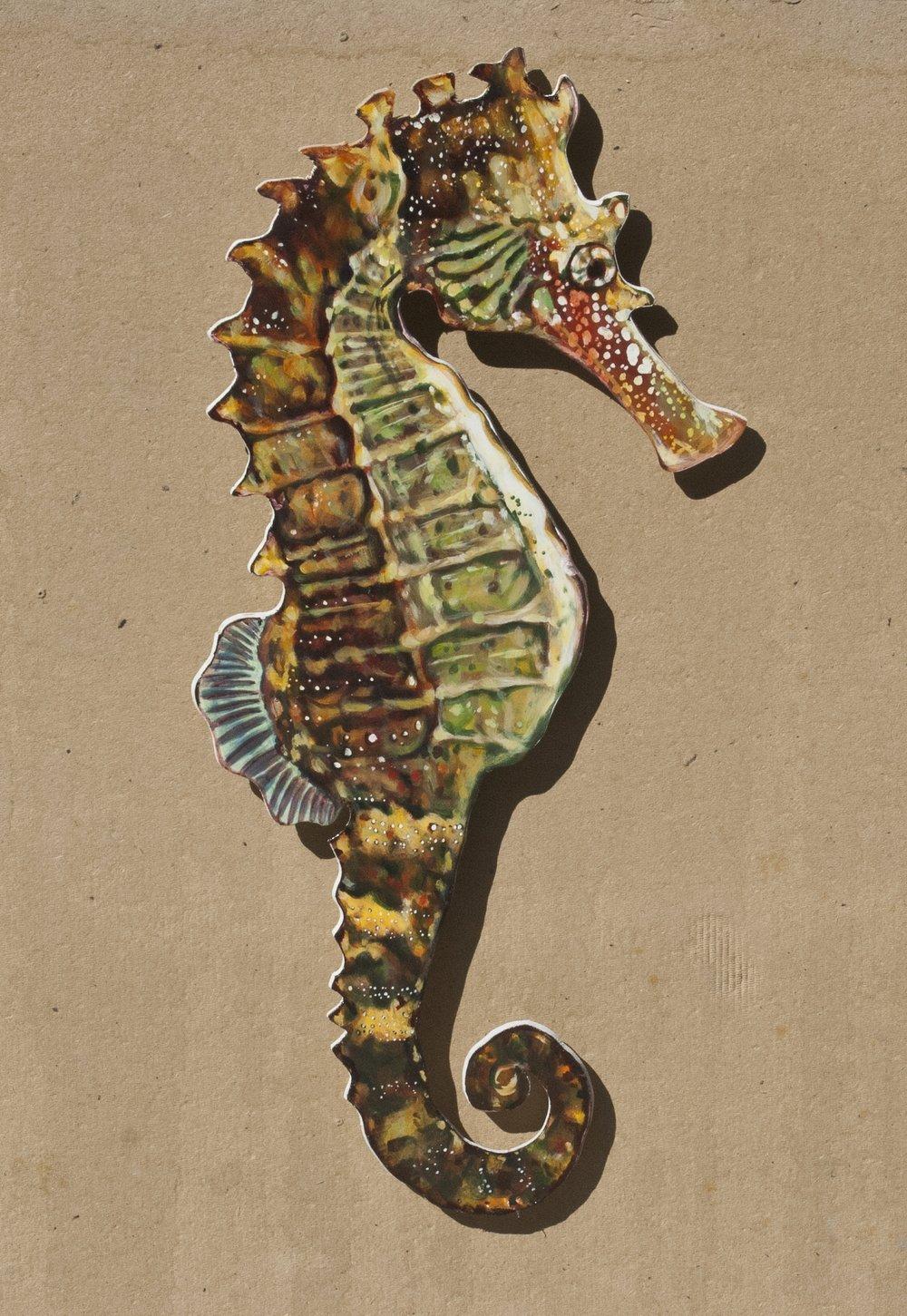 Seahorse, right