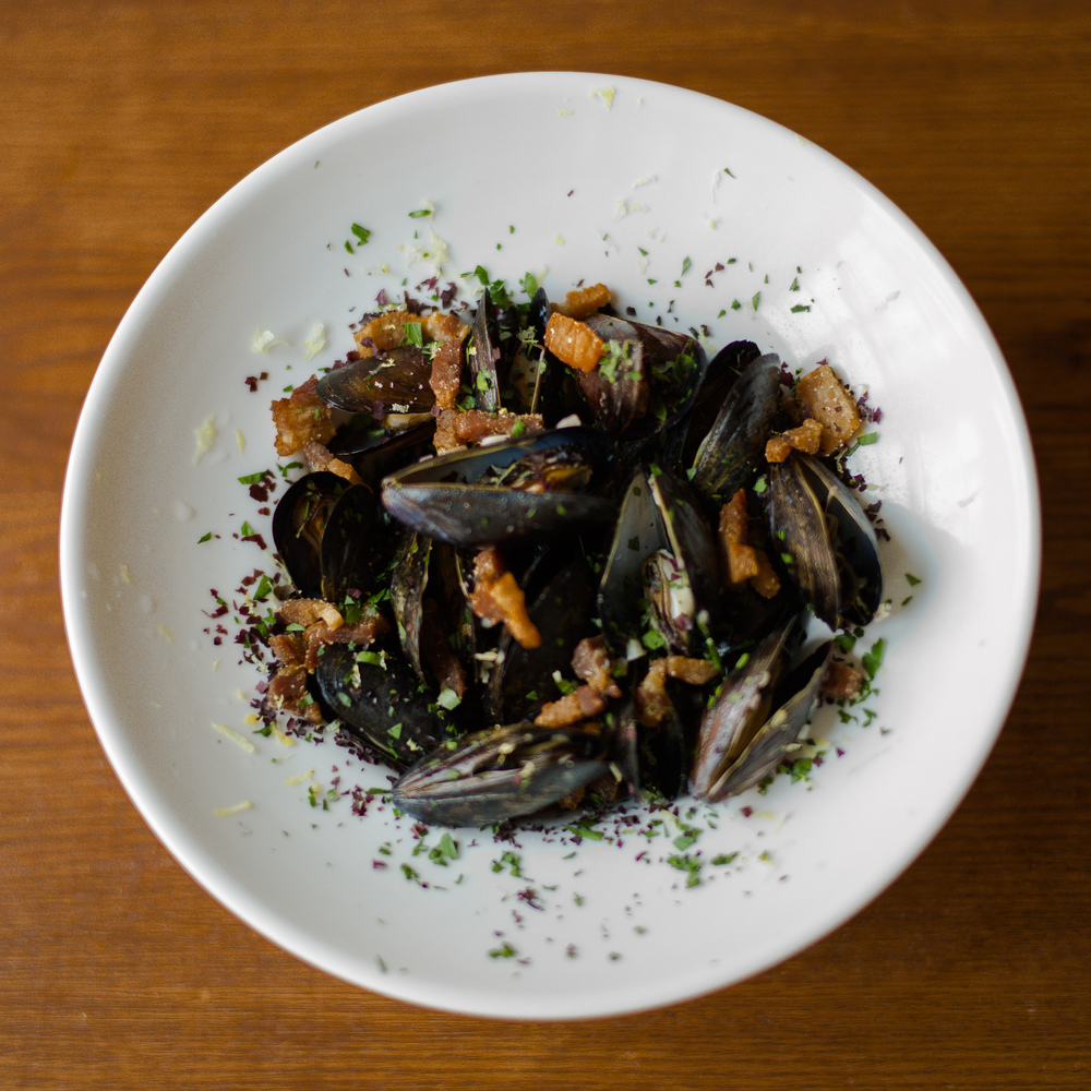 mussels 2 sq.jpg