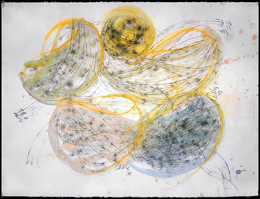 DALE CHIHULY  NIIJIMA DRAWING, 1989   PENCIL AND ACRYLIC ON PAPER   30 X 22""