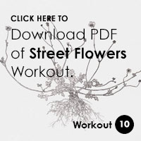 workout-PDF-street-flowers.jpg