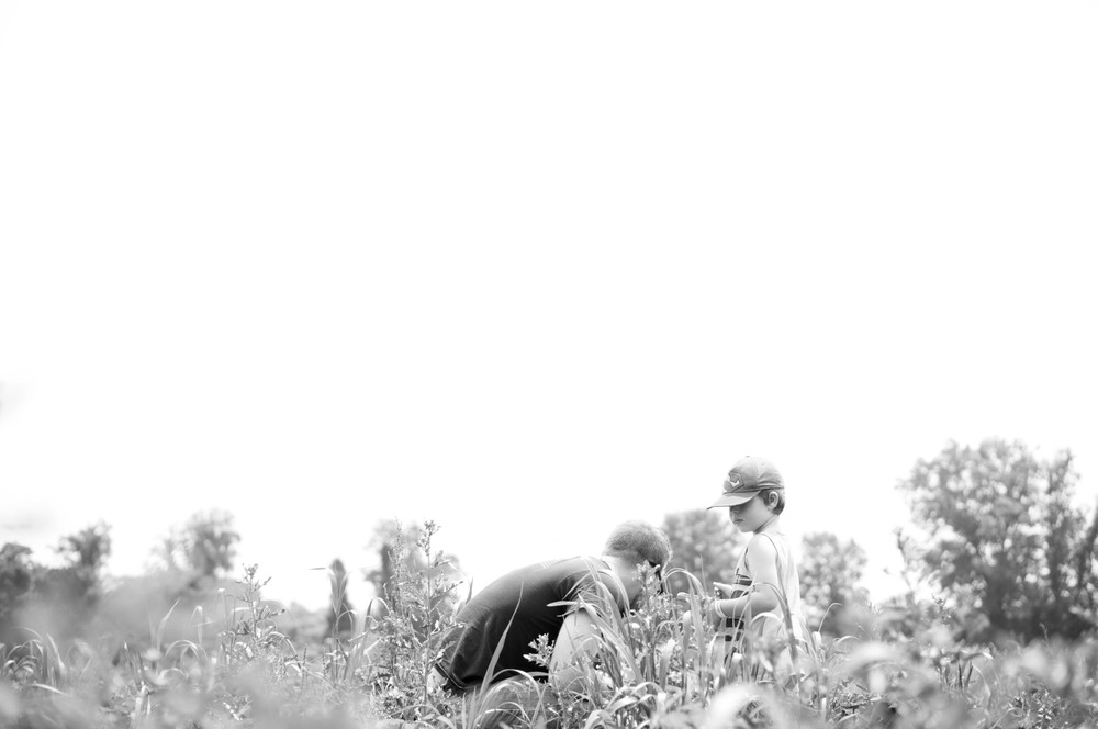 Strawberry Picking (7 of 14).jpg