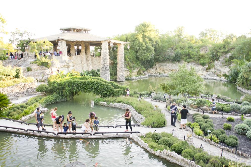 Oriental Gardens (2 of 7).jpg