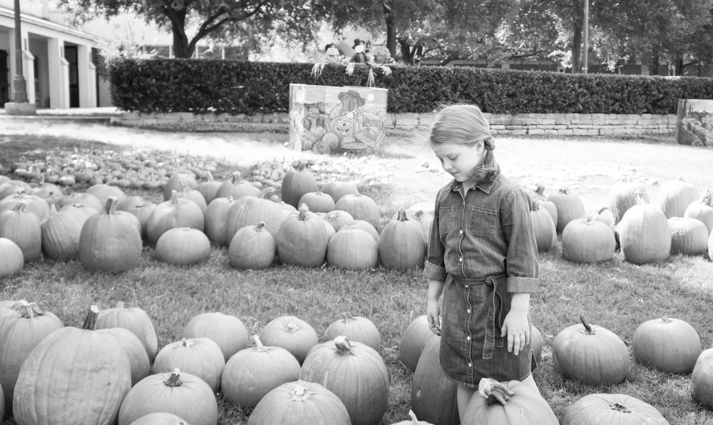 Pumpkin Patch (2 of 2).jpg