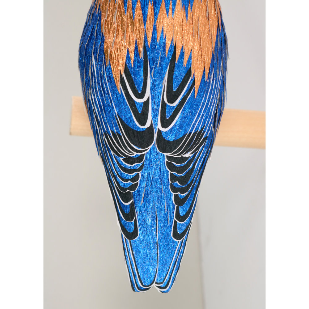 BluebirdWeb2.jpg