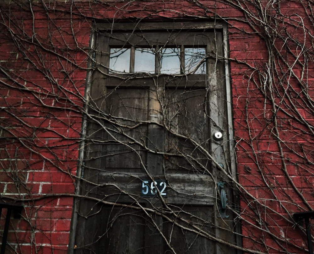 the door.jpg