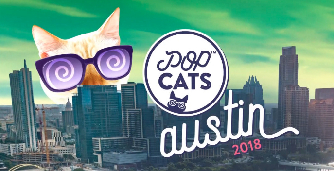 POP Cats Austin Skyline.jpg