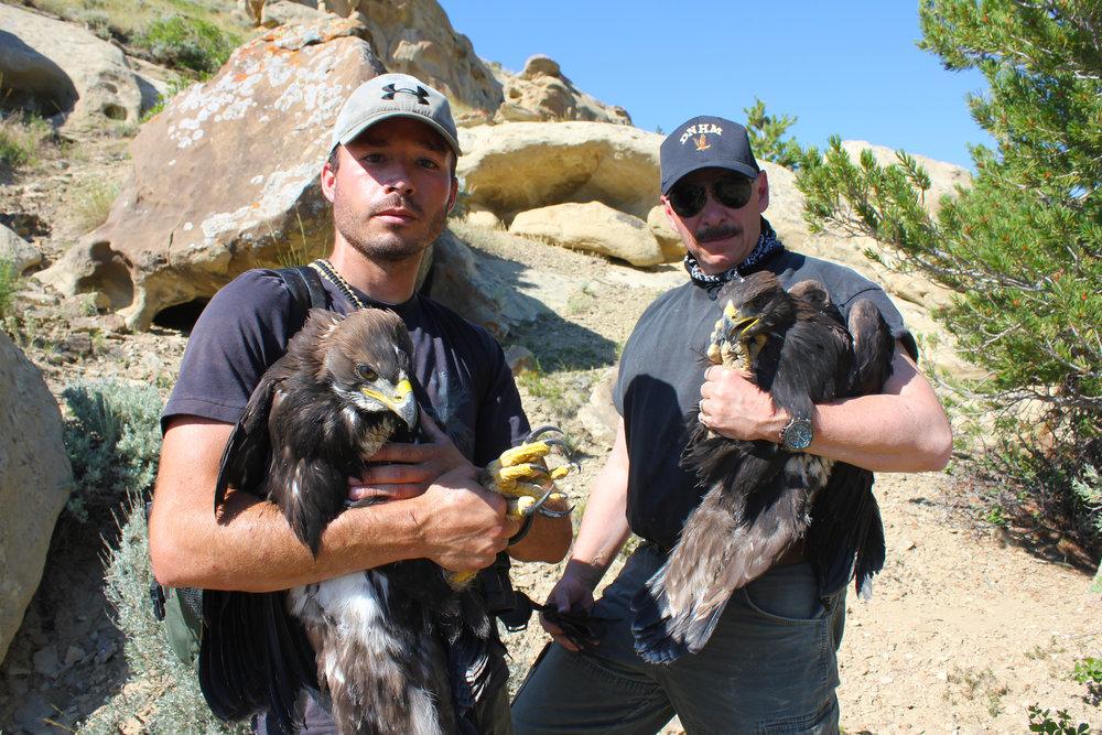 Nate Horton and Dr. Chuck Preston with eagles in hand. Photo: R. E. Jones.