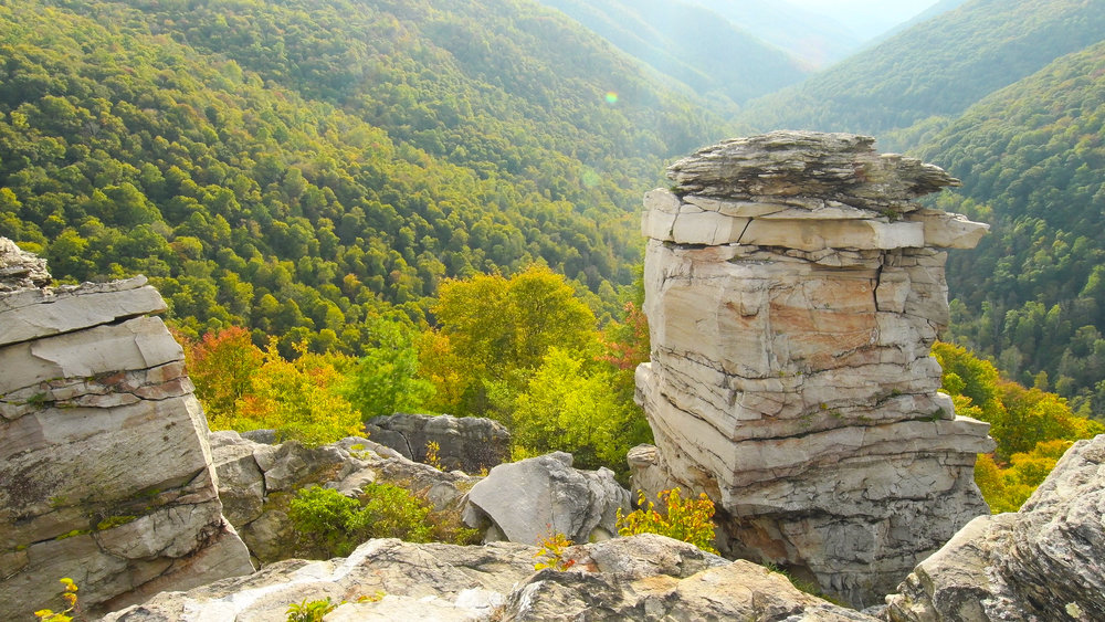 Lindy Point, Blackwater Falls Canyon, West Virginia. Wild Excellence Films.
