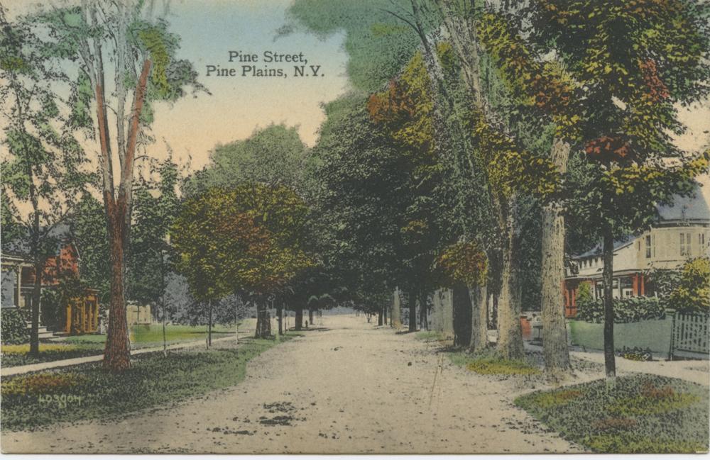 PineStreet1.jpg