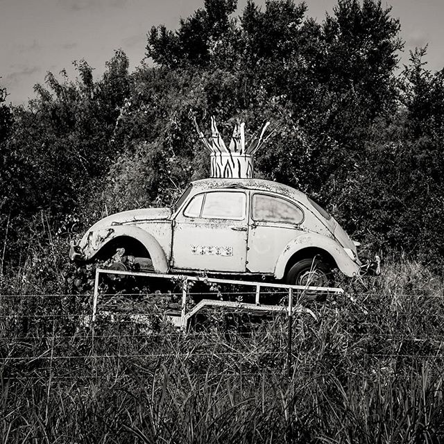Gotta love folk art. #kingofthebugs #folkart #vw #beetle