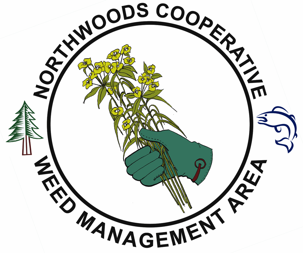 NorthwoodsCooperativeWMA_logo_color.jpg