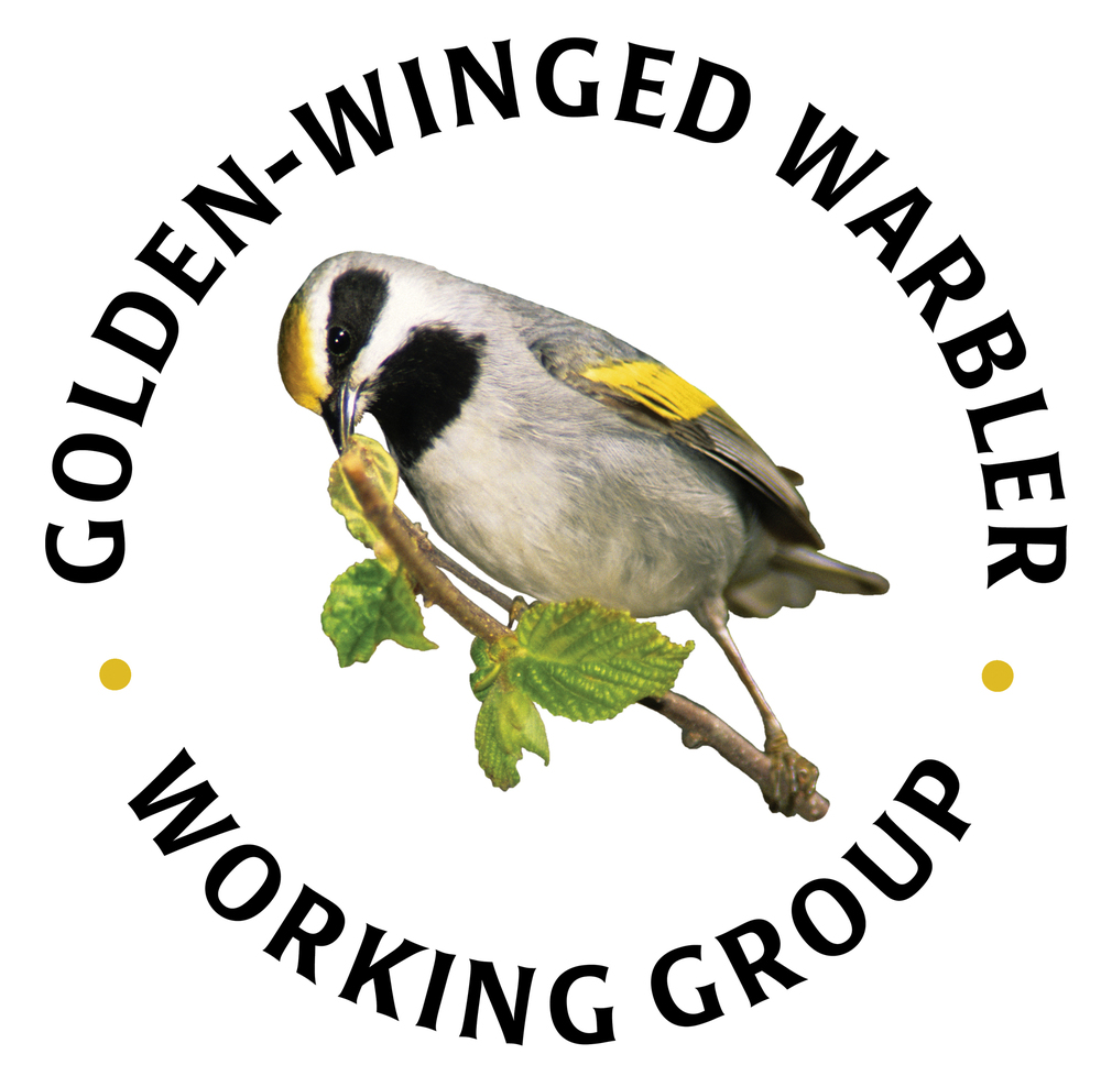 GoldenWingedWarblerGroup Logo_Color.jpg