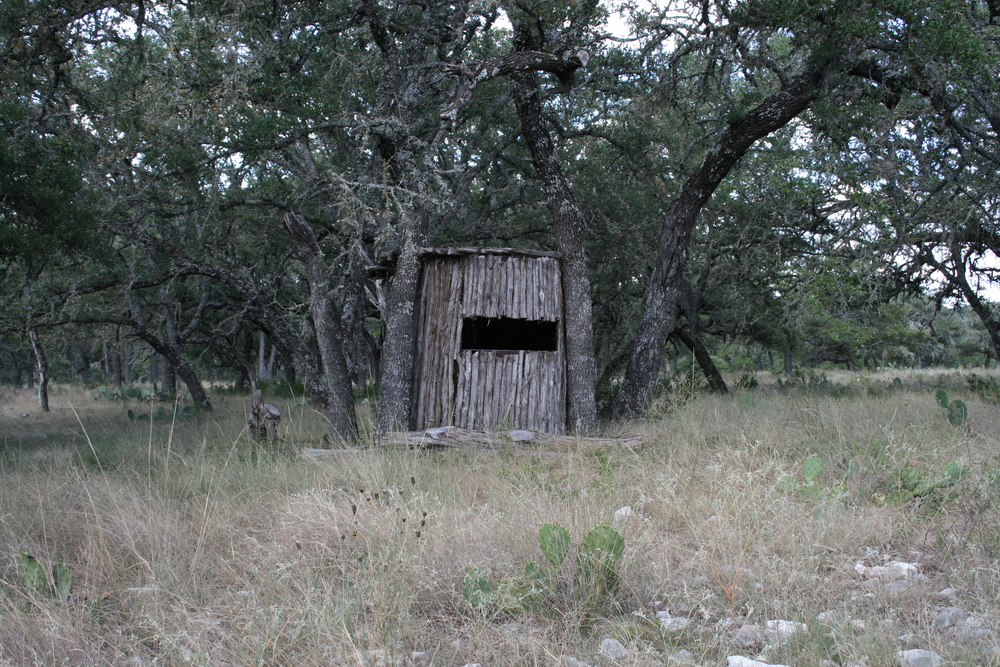 Camouflaged Bow Hunting Blind