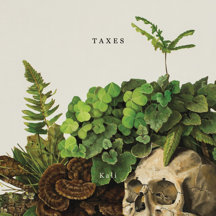 "Taxes Single Release, ""Kali"""