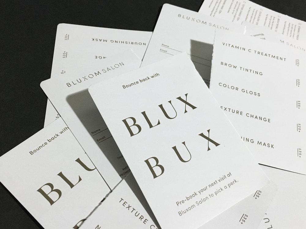 Bluxom Salon | Brand Identity