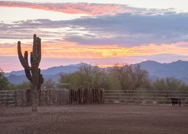 Summer sunrise☀️🌵Always thankful for the gift of a new day. 📷: Charles Brooks  #almostaranch #teamad #westernlifestyle