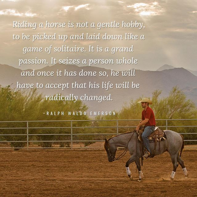 Here's a little inspiration to start your weekend. Ride well and be happy!  #almostaranch #lovewhatyoudo  @justinboots_ @purina @profchoice @wrangler @farnamhorse @priefert_rodeo_ranch @mdbarnmaster @polylast @lubrisynha @vitaflex @jwbrookscustomhats @winniescookies