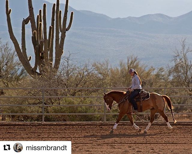 #Repost @missmbrandt ・・・ Take your dreams seriously.  Photo credit: Charles Brooks