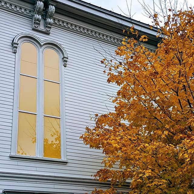 Love this contrast of the tree next to the yellow windows at the Wyeth Center.