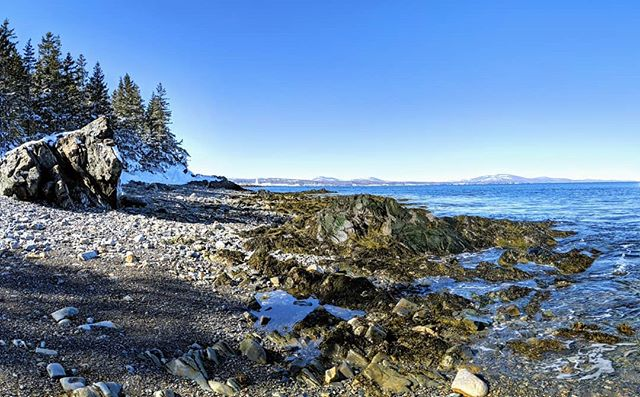 Beautiful day for a walk down to the beach with Miller! #maine #coast #winter #teampixel