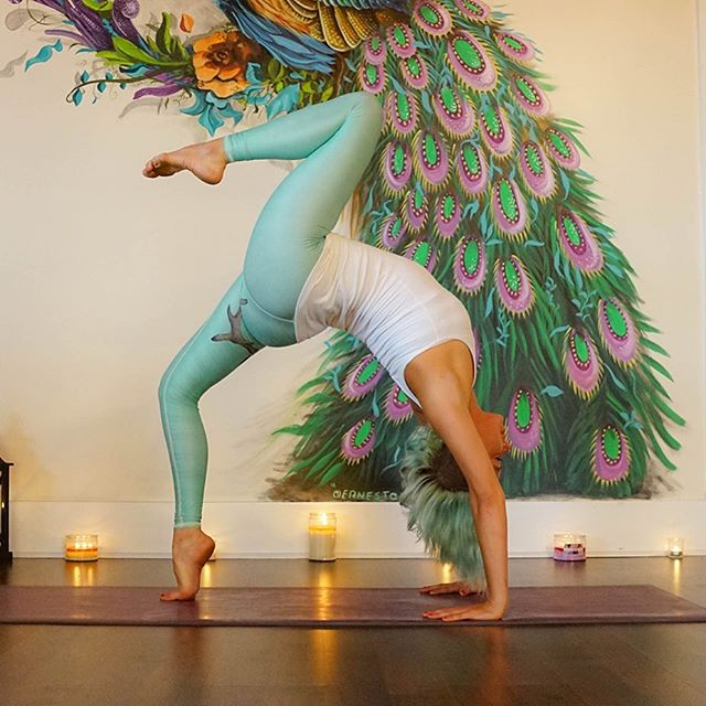 Yoga is for everyone.  Join us tonight at 7 PM for Live Harp and Sitar alongside a restorative flow and crystal bowl sound healing.  Yum 🙏  #crystalbowl #restorativeyoga #yinyoga #meditation #livemusic #soundhealing #wellnessevents #yoga #dance #music #eventvenue #miamiwellness #miamiyoga #yogainmiami #littlehaiti #littleriver #community #inhalemiami #goodforthesoul  Photo by @heks_fx