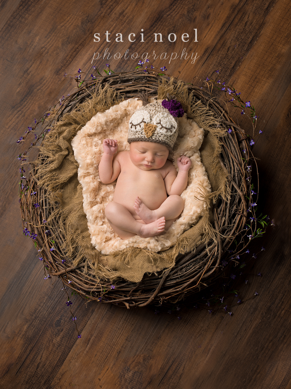 Harrisburg, NC newborn baby girl photographed by Staci Noel Photography in an owl hat in a wreath with purple flowers