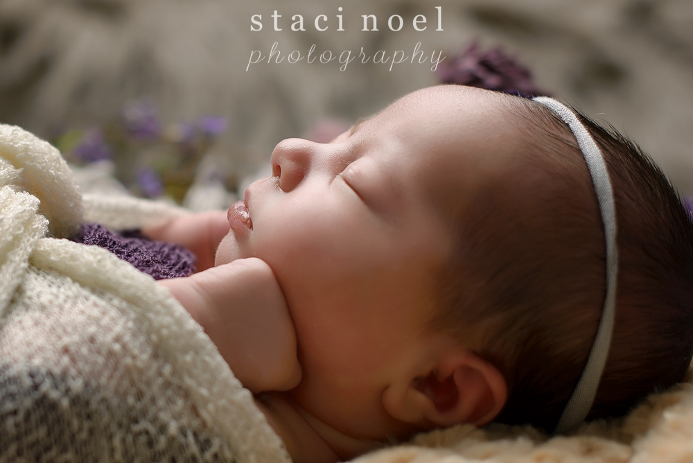 Indian Land SC newborn baby girl photographed by Staci Noel Photography in purple headband with flowers.