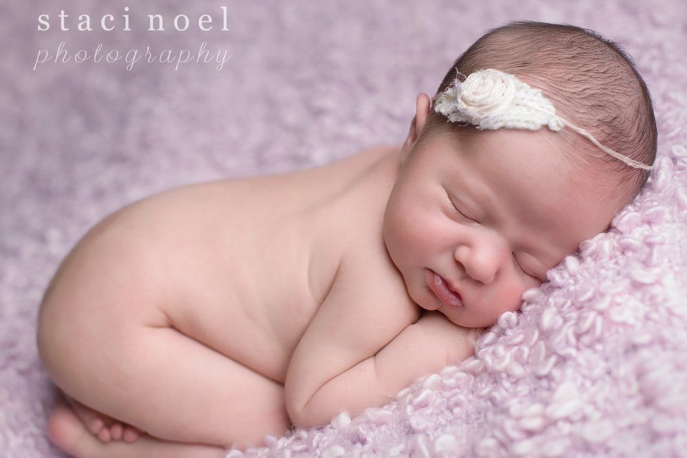 Concord, NC newborn baby girl photographed by Staci Noel photography on lilac backdrop with headband