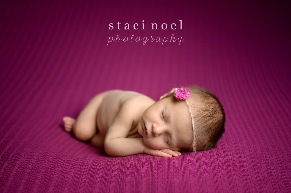 Harrisburg NC newborn baby girl photographed on fuchsia backdrop with pink headband by Staci Noel Photography