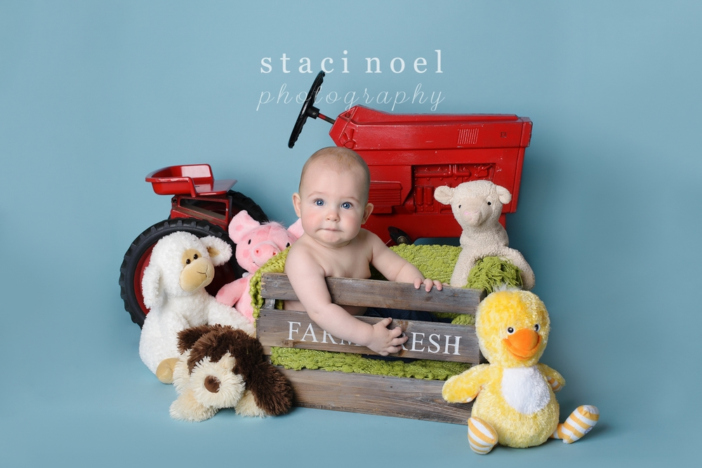 Charlotte NC Newborn & Baby Photographer | Staci Noel Photography1-23.jpg