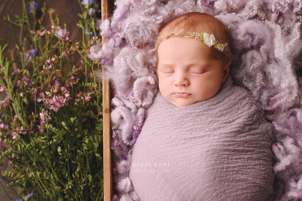 staci.noel.photography.charlotte.newborn2.jpg