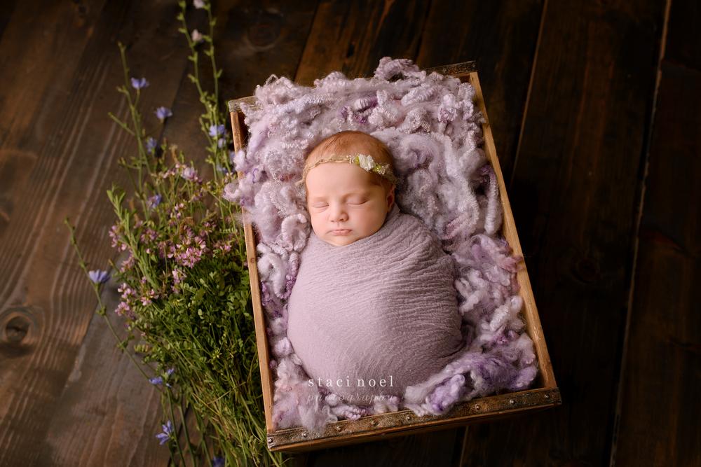 staci.noel.photography.charlotte.newborn3.jpg
