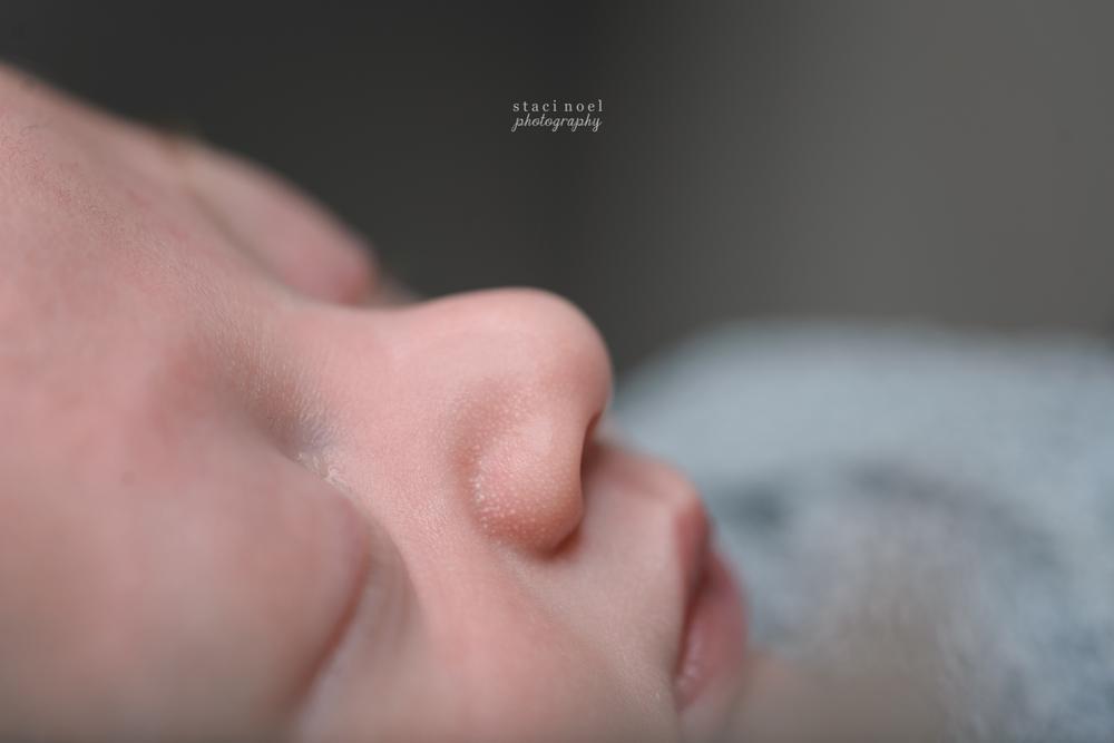 charlotte newborn photography details