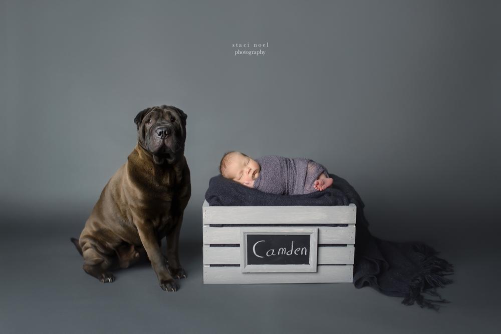 newborn1.stacinoelphotography.1-2.jpg