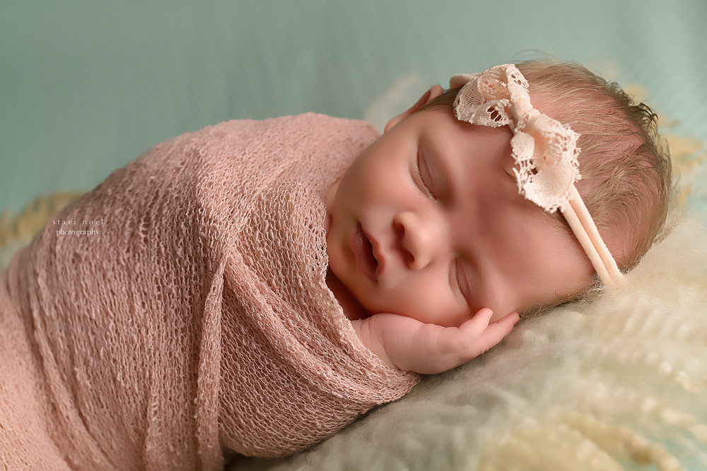 charlotte newborn photography staci noel