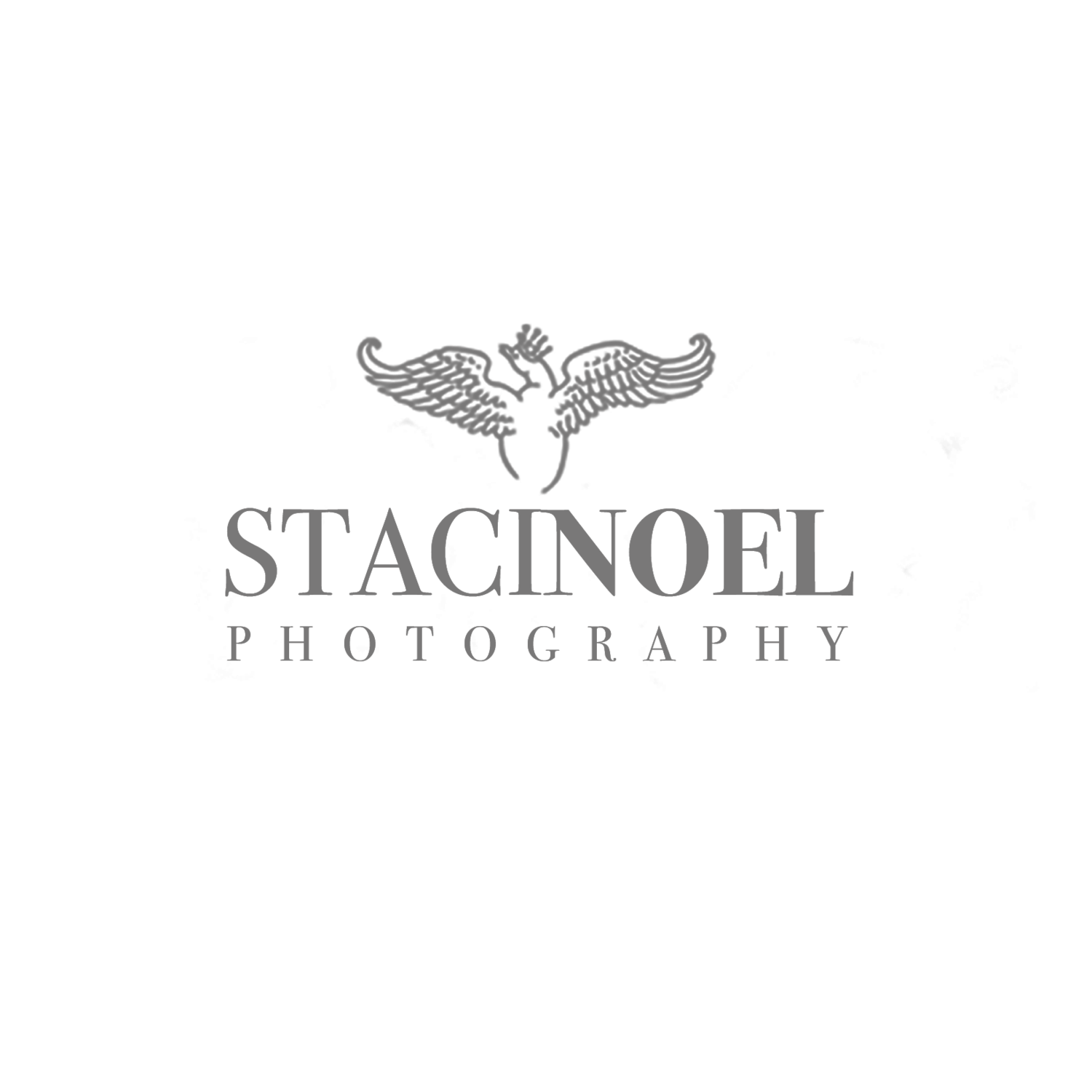 Charlotte NC Photographer | Staci Noel Photography