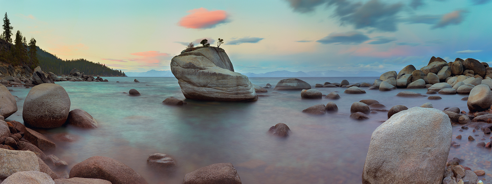 Tahoe Bonsai Rock - USE ME.jpg