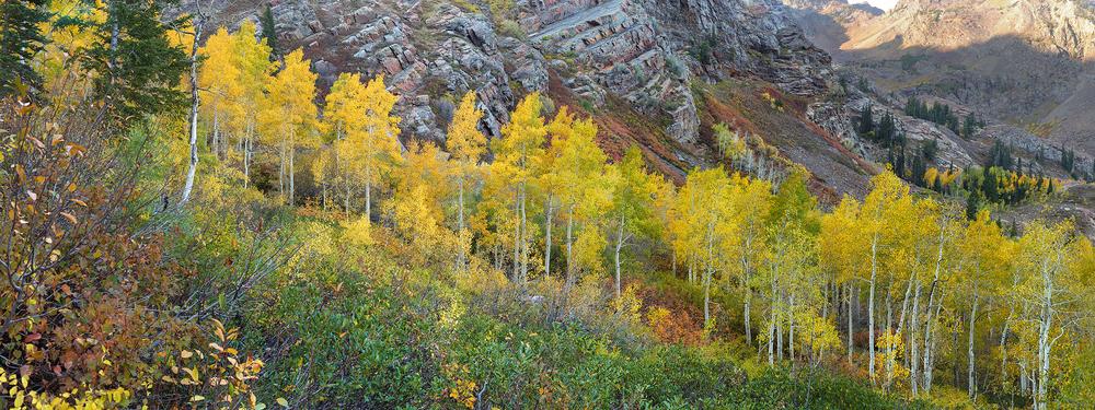 Utah Canyon.jpg