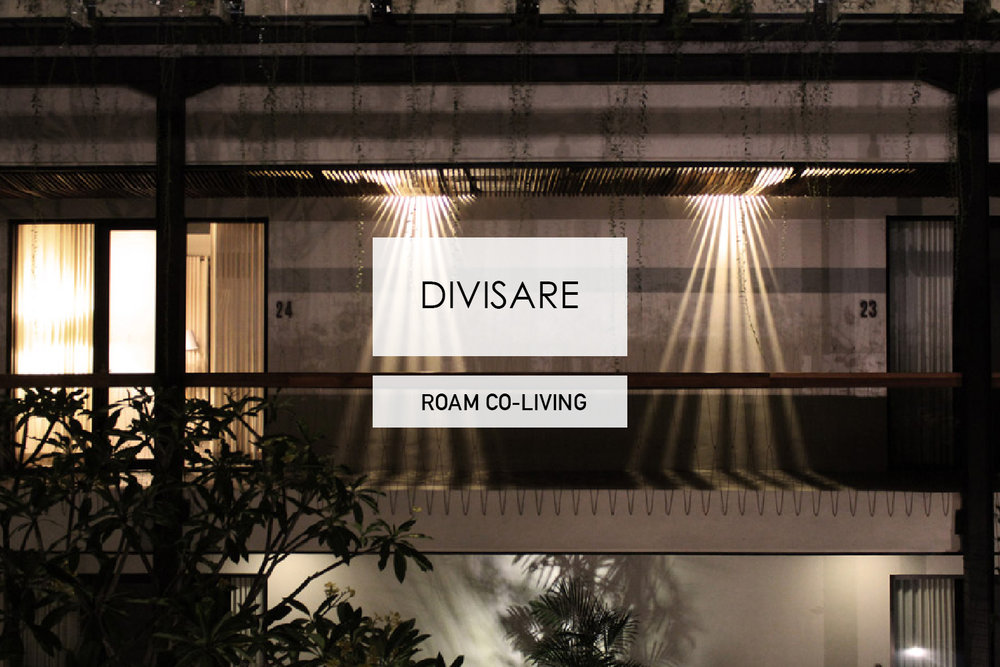 012-DIVISARE-ROAM.jpg