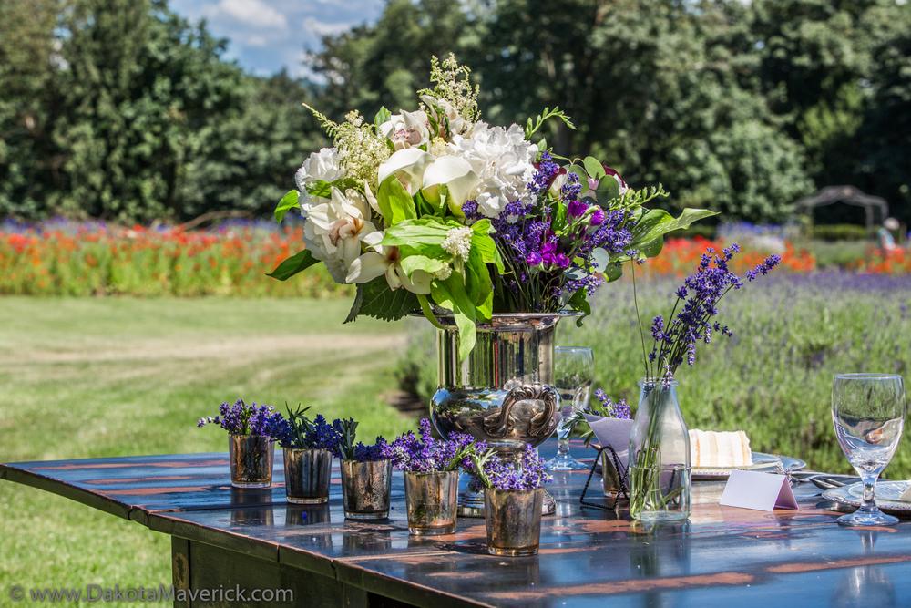Vancouver Wedding Photography - Bridal Lavender