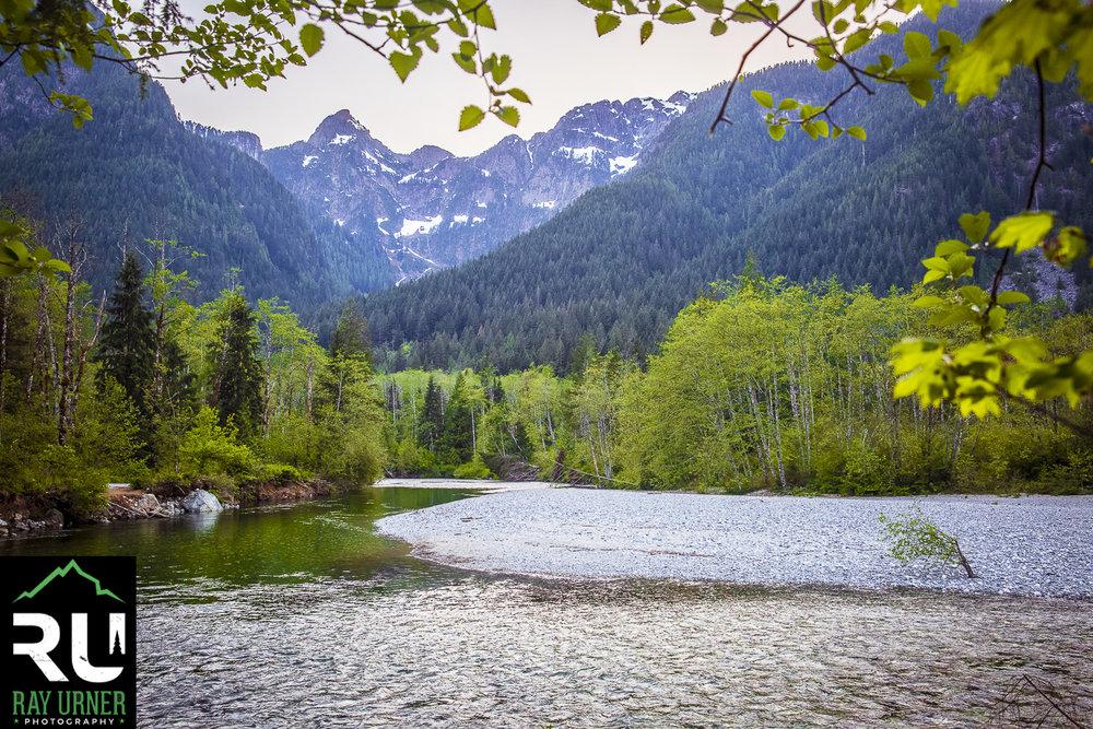 Lower Falls Trail - Gold Creek - Golden Ears Provincial Park (19 of 21).jpg